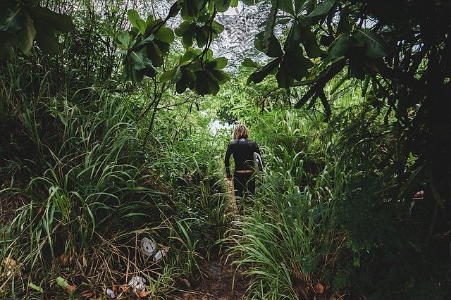 confort - jungle