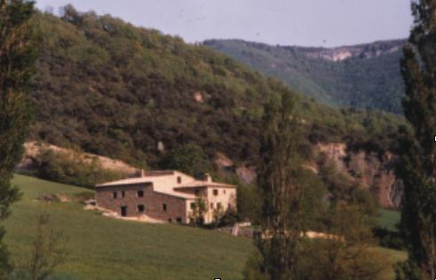 olivier sidler - félines